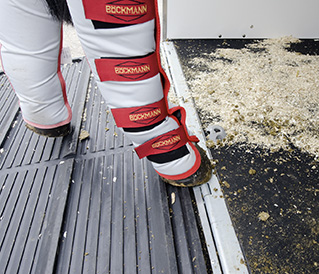 Flooring Horse's Feet