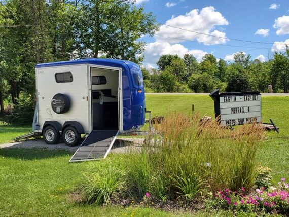 Horse trailer called Portax K with Royal blue roof