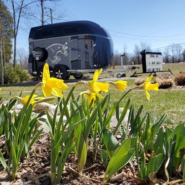 Spring into a New Böckmann Horse Trailer!  Balanced for the mid-size SUV!